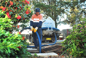 Domestic Septic Waste